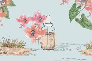 Curso online de Esencias de Orquídeas Amazónicas
